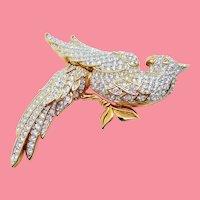 Swarovski Bird of Paradise Pin