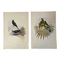 John Gould, Reproduction Prints from British Museum of Natural History, a Pair