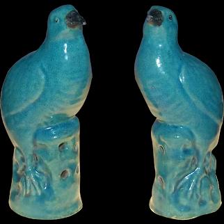 Two turquoise birds, Kangxi ( 1662 - 1722 )