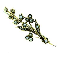 Antique Seed Pearls 9CT Hallmarked Brooch Pin Botanical Signed C&W