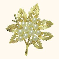 Vintage Exquisite Trifari Faux Pearl Leaf Brooch / Pin