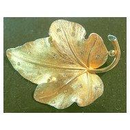 Signed Pennino Vintage Pin/Brooch Rhinestone & Gold Tone Furled Leaf
