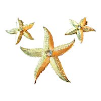 Signed Weiss Vintage Starfish Brooch/Pin & Earrings Set
