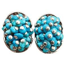 Jay King Southwestern Sterling Silver Turquoise Earrings