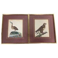 Pair of Hand-painted mid 19C Steel Bookplate engravings of Birds