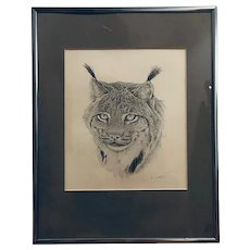 Bobcat pencil drawing - untitled