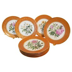 A fine Set of 8 Old Paris Plates Painted with Rose Sprays After Redoute'