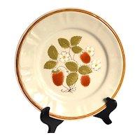 Vintage Dinner Plates, Americana Hearthside Stoneware, Berries 'n Cream,  Set of 4