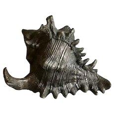 Vintage Bronze Conch Shell  Decorative Arts Statue Nautical Seaside Decor Large 30 Oz.