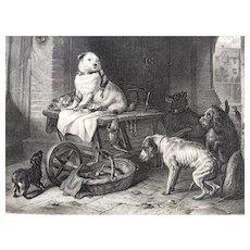 19th Century Landseer Dog Engraving - JACK in OFFICE