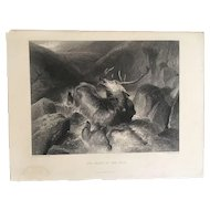 19th Century LANDSEER Engraving ~ The Death of the Stag