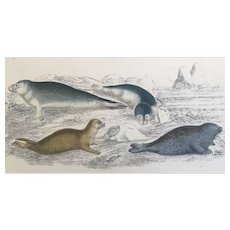 19th Century Oliver Goldsmith Seals Engraving