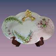 W G & Co. Limoges France Signed Hand Painted Tray Candy Dish