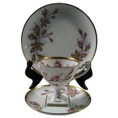 Hand Painted Limoges Trio Set ~Pedestal Cup, Saucer and Plate
