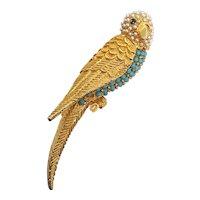 Pretty Parrot Bird Pin