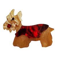 Layered Celluloid Scottie Scottish Terrier Dog Pin