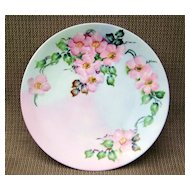 "Bavaria 1900's Vibrant Hand Painted ""Wild Pink Roses"" 9-1/8"" Plate by the Artist, ""B.G. Kudera"""