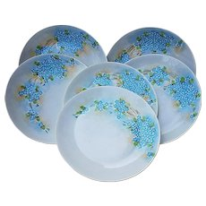 """50% OFF Beautiful Hutschenreuther Selb Bavaria Vintage 1900's Hand Painted """"Forget Me Not"""" Set of 6 Floral 9"""" Plates"""