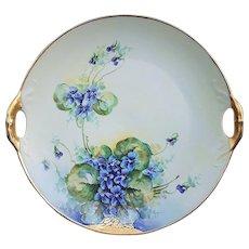 "Gorgeous Bavaria 1905 Hand Painted Vibrant ""Violets"" 10-1/2"" Floral Plate by Edward Donath Studio Artist, ""Rech"""