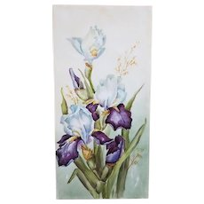 """Stunning Limoges France 1900's Hand Painted """"Iris"""" 11-7/8"""" x 5-3/4"""" Floral Plaque"""