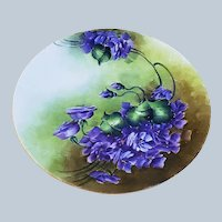 "Vibrant & Beautiful J & C Bavaria 1900's Hand Painted ""Deep Violets"" Floral Plate"