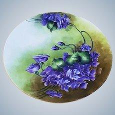 "Vibrant & Beautiful J & C Bavaria 1900's Hand Painted ""Deep Violets"" Floral Plate"