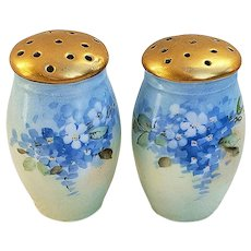 """Beautiful ZS & Co. Bavaria 1900's Hand Painted """"Forget Me Not"""" Pair of Floral Salt & Pepper Shakers, Artist Signed"""