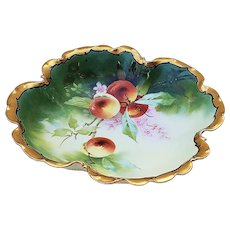 """Outstanding Julius Brauer Studio of Chicago & Rosenthal 1905 Hand Painted """"Apples"""" 10"""" Fruit Bowl by Listed Artist, """"George Stahl"""""""