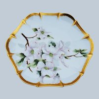 """Charming Tressemann & Vogt 1900 Hand Painted """"White Morning Glory"""" with Heavy 22 K Gold Accenting 6-Sided Floral Plate"""