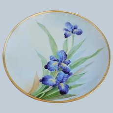 "Gorgeous Vintage Bavaria 1915 Hand Painted ""Purple Iris"" Floral Plate by the Early Chicago Artist, ""VAN"""