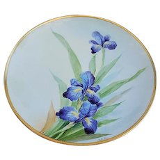 """Gorgeous Vintage Bavaria 1915 Hand Painted """"Purple Iris"""" Floral Plate by the Early Chicago Artist, """"VAN"""""""