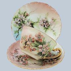 """Stunning Ester Miler T & V Limoges France 1900 Hand Painted """"Apple Blossoms"""" 3 Pc Floral Cup, Saucer, & Dessert Plate"""