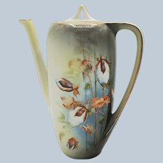 """Gorgeous RS Prussia 1900's """"Cotton Plant"""" 10"""" Scenic Coffee Pot"""