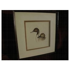 JOYCE HAGERBAUMER REED (1945-) 20th century wildlife art original fine drawing of duck heads by listed artist