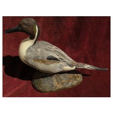 Hand painted limited edition wildfowl duck sculpture signed MARK YOUNG