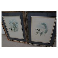 JOHN GOULD (1804-1881) **PAIR** of hand colored lithograph prints of hummingbirds by noted ornithologist illustrator artist