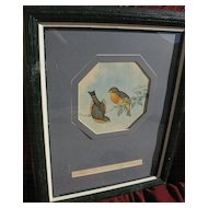 JOHN GOULD (1804-1881)  hand colored lithograph print of Asian birds by noted ornithologist artist