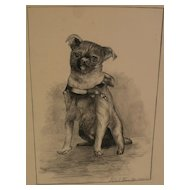 Dog art original English black ink drawing of a pug dated 1894