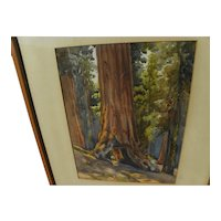 """California vintage plein air art watercolor painting of famous giant sequoia """"Tunnel Tree"""" signed J. M. Stewart"""