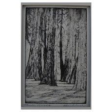"""HARRIET GENE ROUDEBUSH (1908-1998) pencil signed etching """"Muir Woods"""" by listed San Francisco artist"""