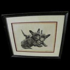 KURT MEYER-EBERHARDT (1895-1977) pencil signed etching of Scottish Terrier dogs by German animal art master