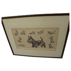 "DIANA THORNE (1895-1963) pencil signed 1937 etching ""Scottie"" by the noted dog artist and illustrator"
