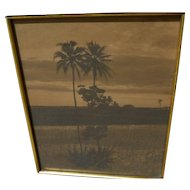 Hawaiiana sepia toned photo of palms in a landscape framed circa 1930