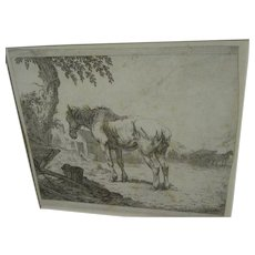 Old master 17th century Dutch etching of horse