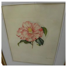 ANNE T. CARGILL (1877-1965) original painting of flower by Georgia listed artist