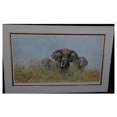 DAVID SHEPHERD (1931-) important African wildlife art pencil signed large photolithograph print