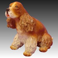 English Springer ~ Cocker Spaniel Spaghetti Dog by Jane Callender or Hardie Arnita