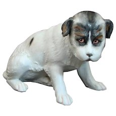 Adorable Antique Gebrueder Huebach German Bisque Porcelain Puppy Dog