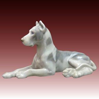 Proud 1950's Porcelain Harlequin Great Dane Dog by Bing Grondahl ~ B & G Denmark