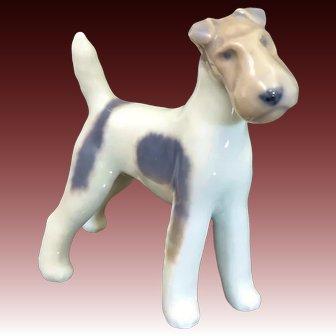 Royal Copenhagen Proud & Tenacious Early 20th Century Porcelain Fox Terrier Dog Statue